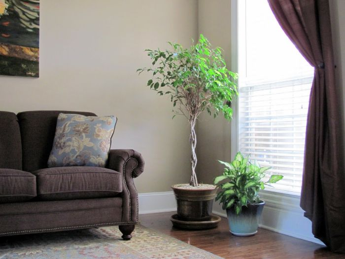 Air Conditioning In Your Home