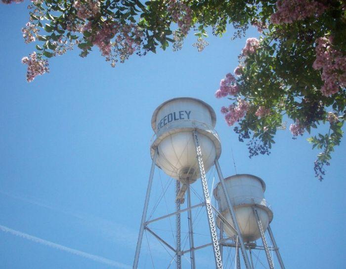 Reedley California