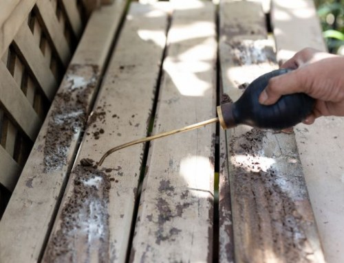 How Air Conditioner Drippings Attract Termite Infestation